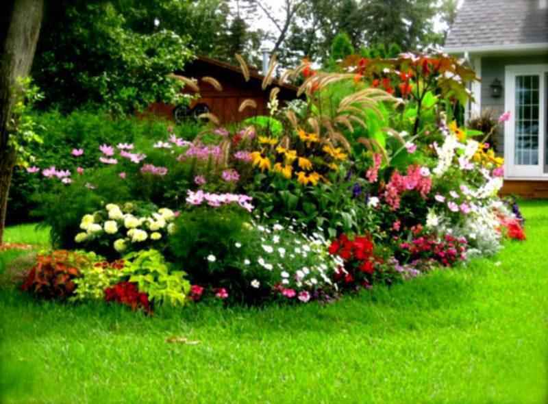 Сад клумбы своими руками фото