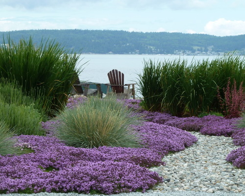 Overcoming the Challenges of Gardening by the Seaside