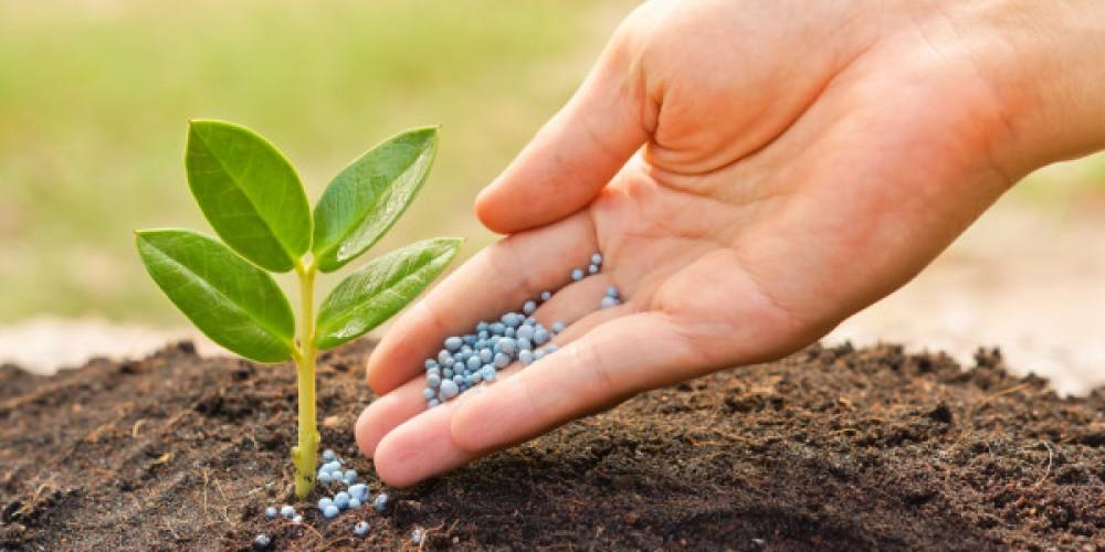 Fertilising Your Garden Jimsmowing Com Au