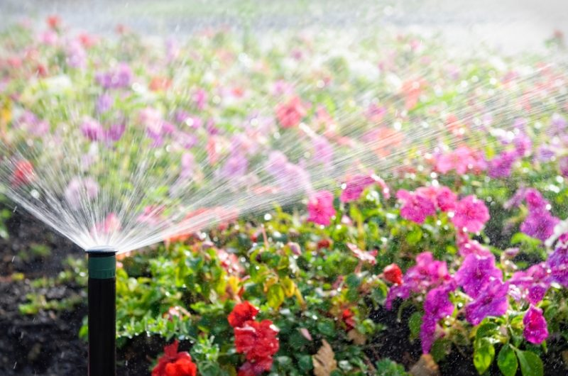 Garden Irrigation Maintenance Tips