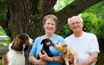 Jim's Mowing can help you Create a Pet Haven