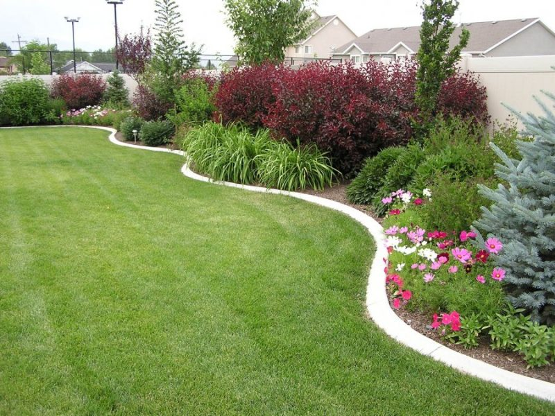 Top 3 Landscaping Ideas For Large Backyards - JimsMowing ... on Back Wall Garden Ideas id=50535