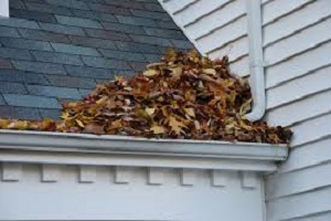 How To Prepare Your Gutters For Autumn