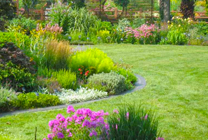 Top 3 Landscaping Ideas For Large Backyards