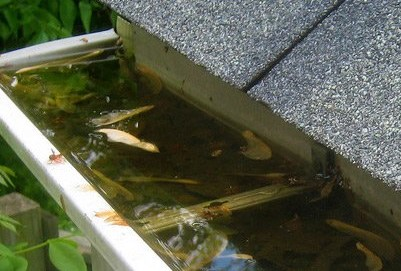 4 Crucial Steps To Prevent Clogged Gutters Jimsmowing Com Au