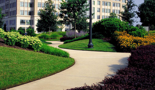 What Do Commercial Landscapers Actually Do?