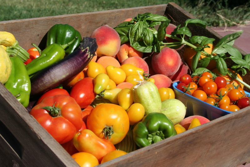 Summer Fruits and Vegetables to Grow
