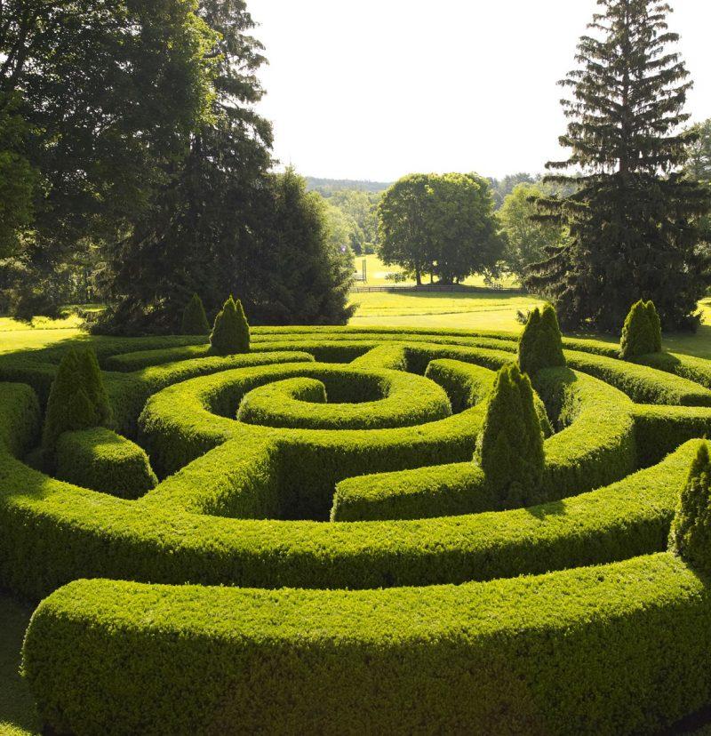 Garden Hedge Maze