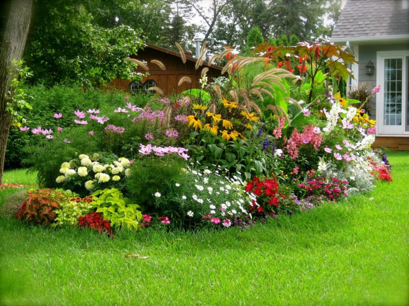 Stunning Flower Bed Arrangements