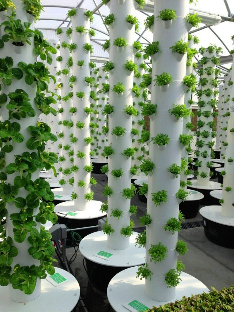 Pvc Pipe Garden Fit Into Any Space Jimsmowing Com Au
