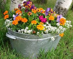 No Space? Try Container Gardening!