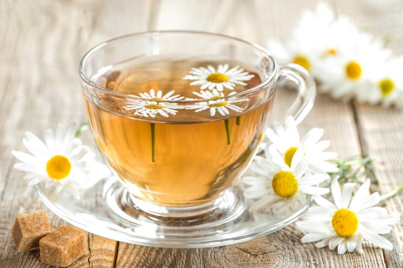 How To Grow Your Own Organic Herbal Tea