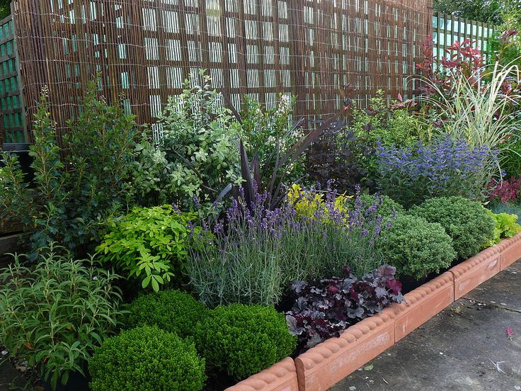 5 Tips To Having Successful Low-Maintenance Gardens ...