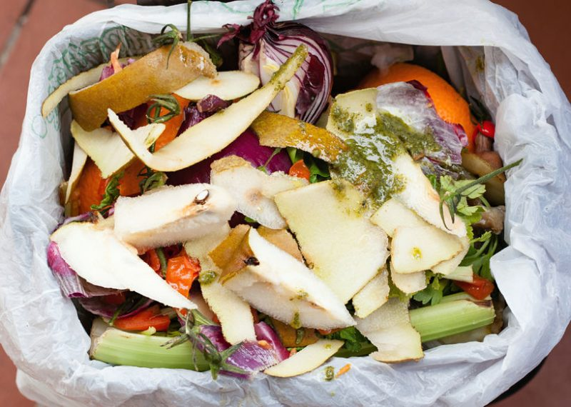 Fruit and Vegetable scraps ready to add to the compost bins