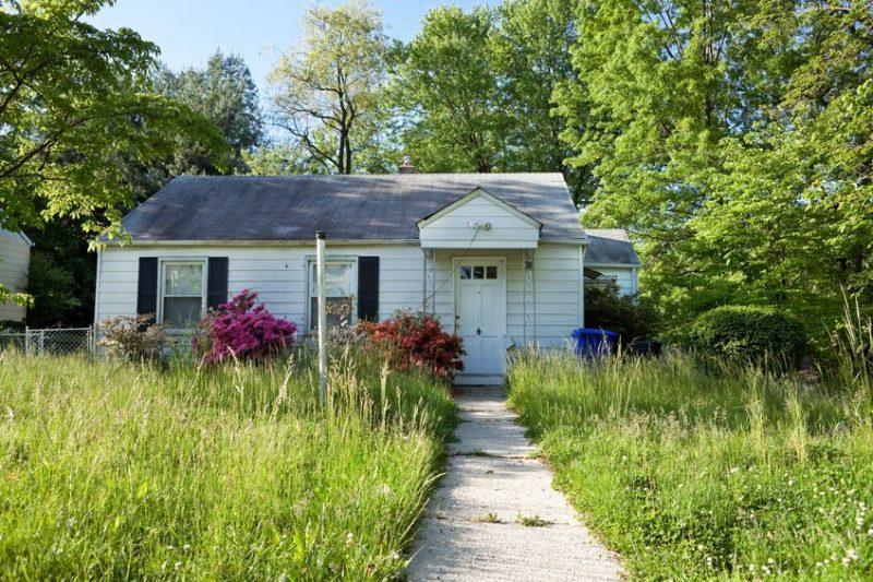 Garden Maintenance needed badly on overgrown front yard