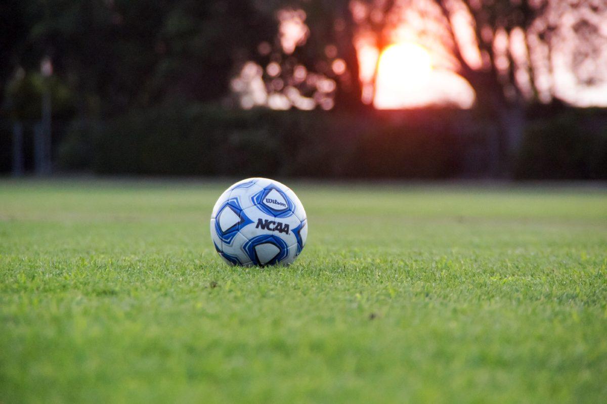 Sports Grass Fields