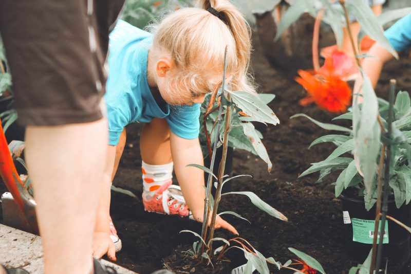 Making a garden that is safe and fun for children with disability
