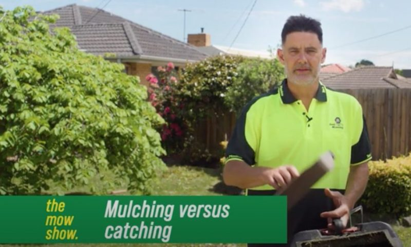 Should You Catch or Mulch When Mowing?